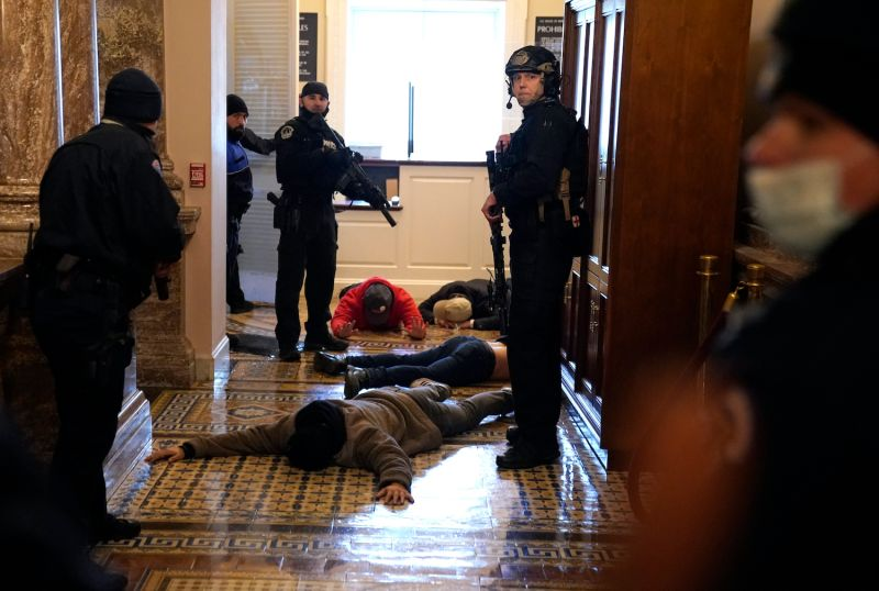 U.S. Capitol Police detain protesters