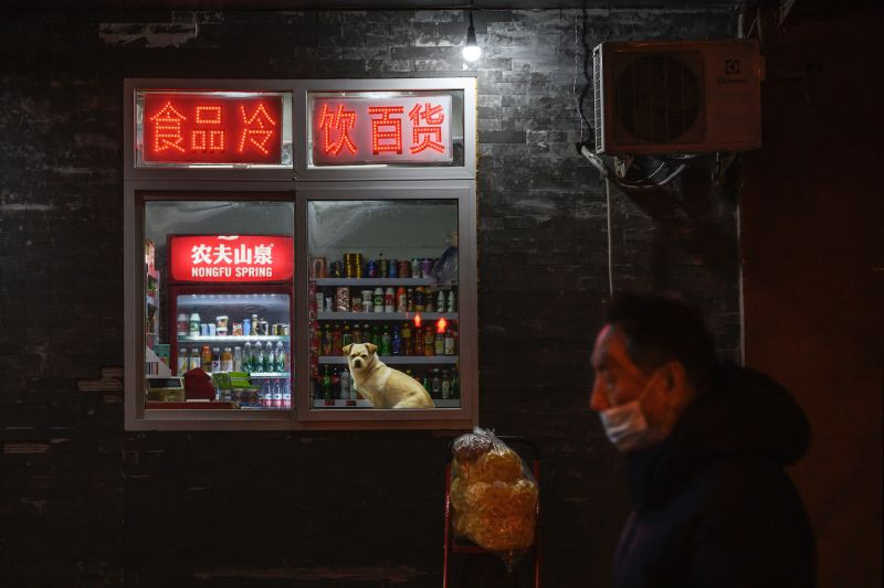 A dog sits in the window of a local convenience store in Beijing on Dec. 16.