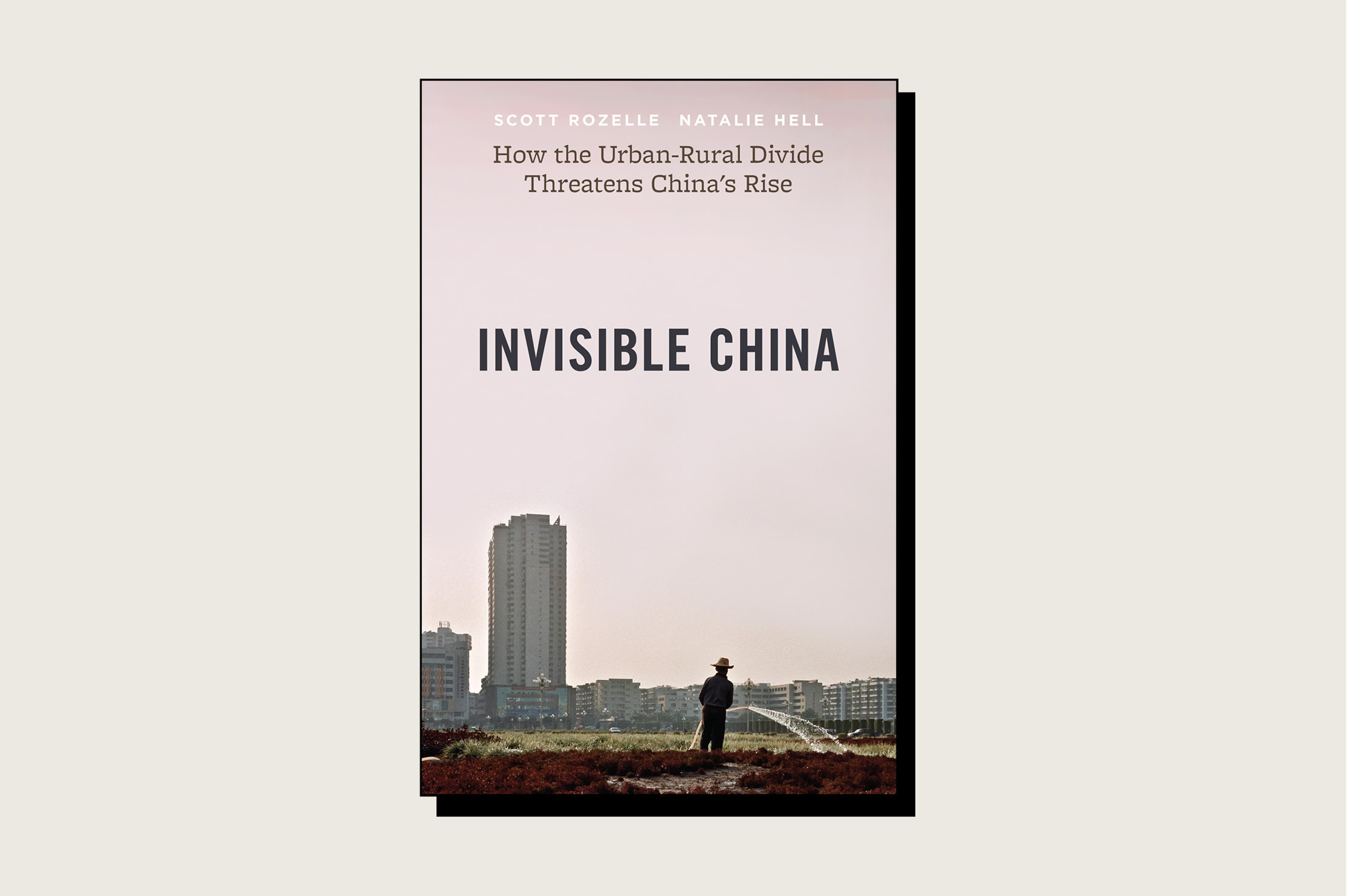 Invisible China: How the Urban-Rural Divide Threatens China's Rise, Scott Rozelle and Natalie Hell, University of Chicago Press, 248pp., 2020.