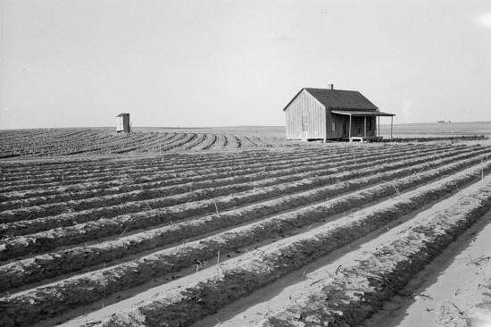 A Texas farm in 1938
