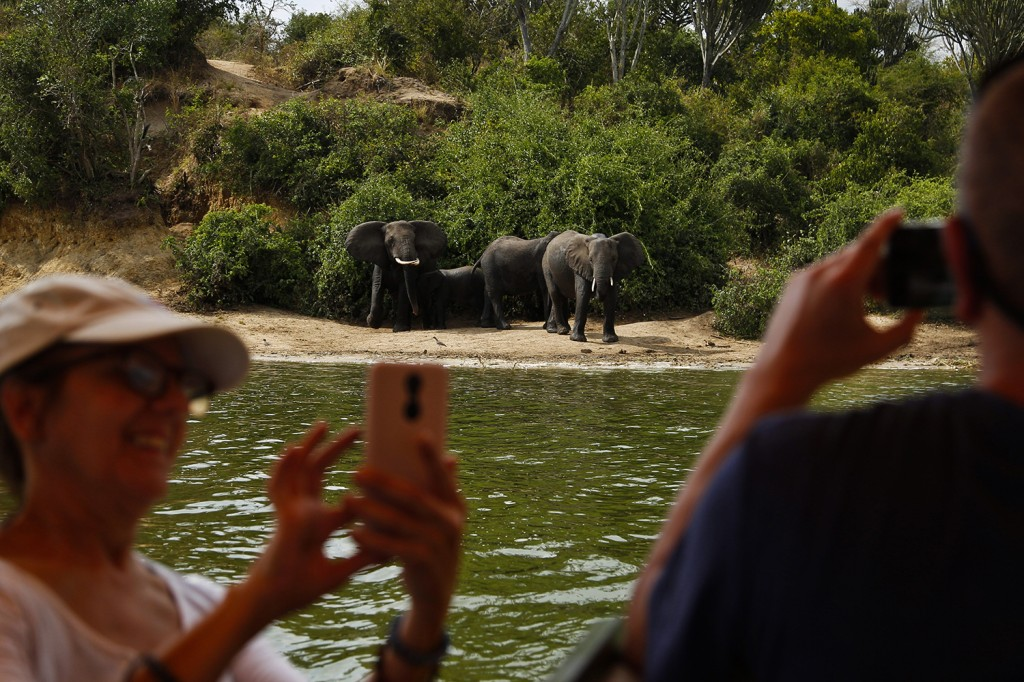 Tourists photograph elephants in Queen Elizabeth National Park.