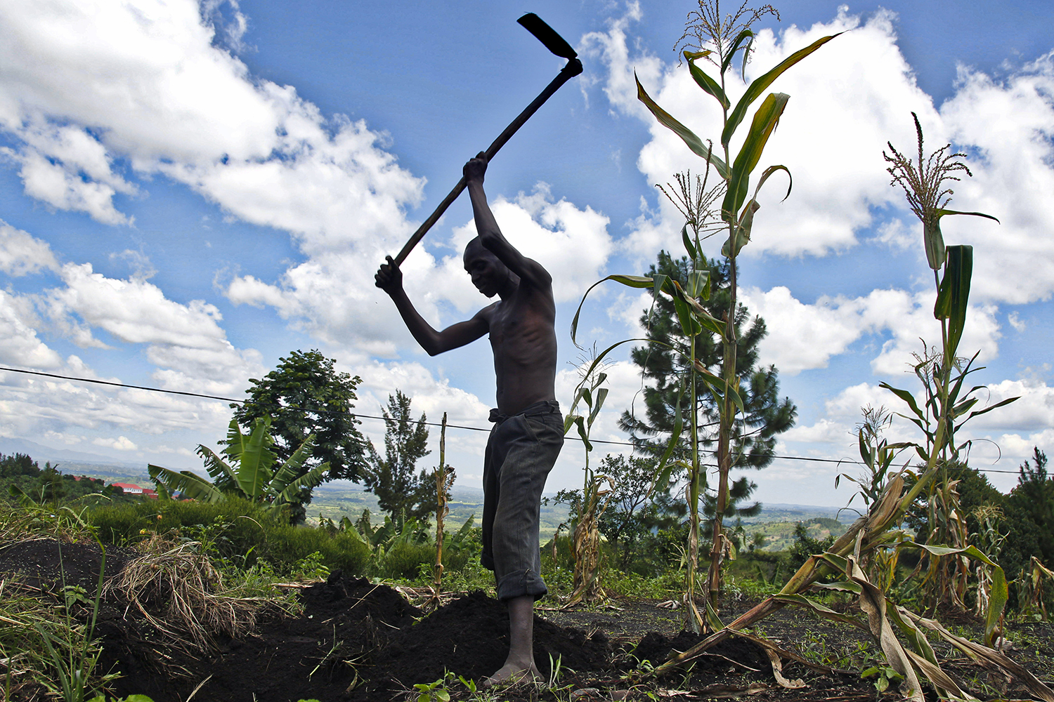 A farmer prepares the earth for cultivation near the Lake Nkuruba Nature Reserve in southwest Uganda on Feb. 7, 2020.