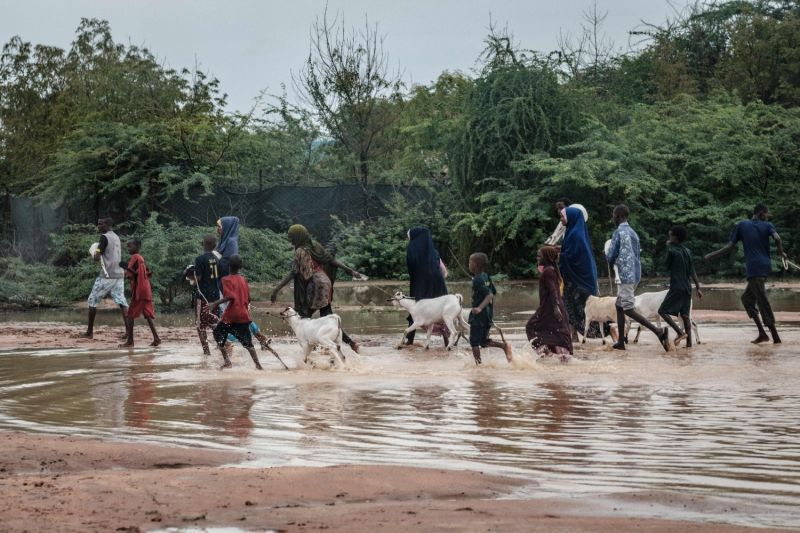 Refugees walk with their goats in floodwaters at the Dadaab refugee complex, in the northeast of Kenya, on April 17, 2018.