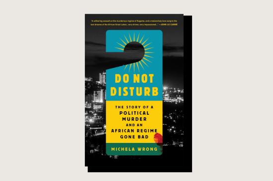 Book cover Do Not Disturb