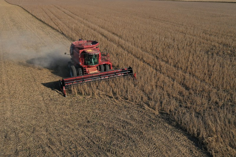 A combine harvests soybeans in a field at the Bardole & Sons farm in Rippey, Iowa, on Oct. 14, 2019.