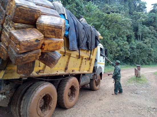 Trucker pays man at roadblock in Democratic Republic of the Congo