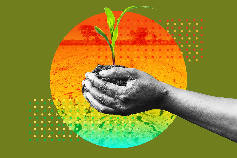 FP-UAE-Farmers-Climate-Change