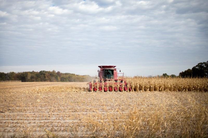 A farmer harvests corn near Burlington, Iowa, on Oct. 22, 2015.