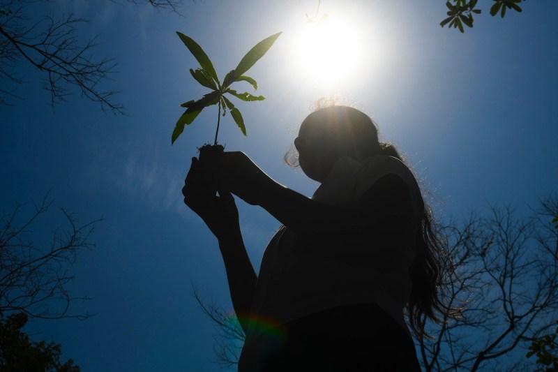 A student holds a plant during a national campaign for the reforestation of El Salvador at Walter Thilo Deininger National Park near San Salvador, El Salvador, on June 5, 2017.
