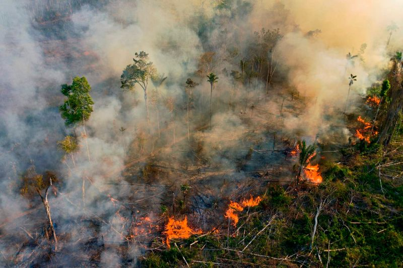Smoke and flames rise from an illegally lit fire in the Amazon rainforest reserve in Brazil.