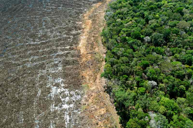 Aerial picture of a deforested area close to Sinop, Mato Grosso State, Brazil, on August 7, 2020.