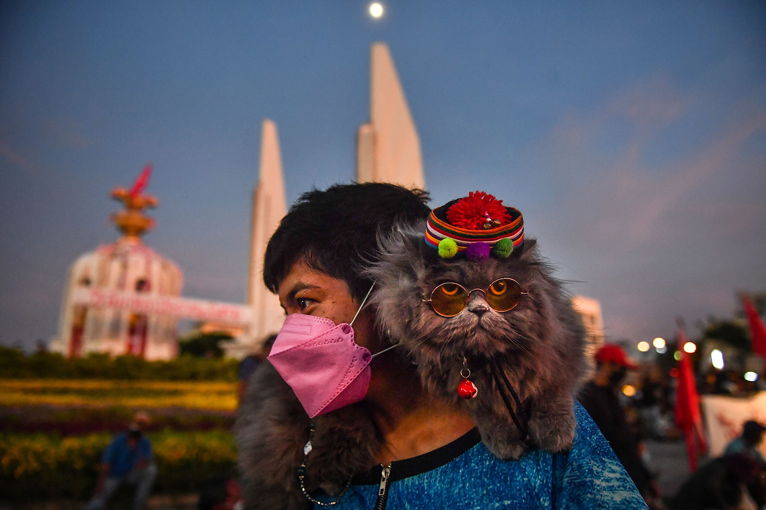Cat in glasses and hat at Thailand protest