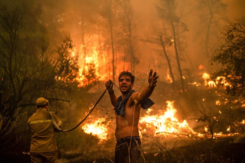 A Greek resident tries to extinguish a forest fire.