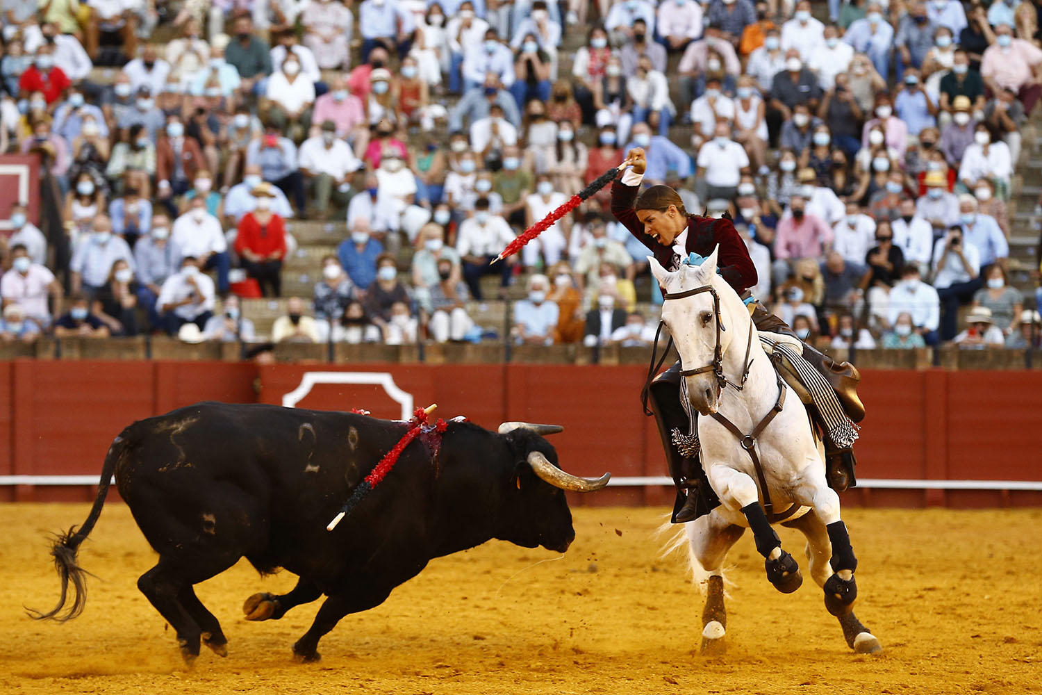 The French mounted bullfighter Lea Vicens performs during a bullfight in Seville, Spain, on Sept. 26. Marcelo del Pozo/Getty Images